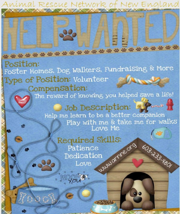 ARNNE dog rescue needs volunteers to provide foster homes, dog walking, fundraising and more.