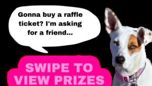 Gonna buy a raffle ticket (2)