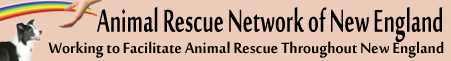 ARNNE: Animal Rescue Network of New England
