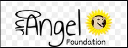 our angel foundation