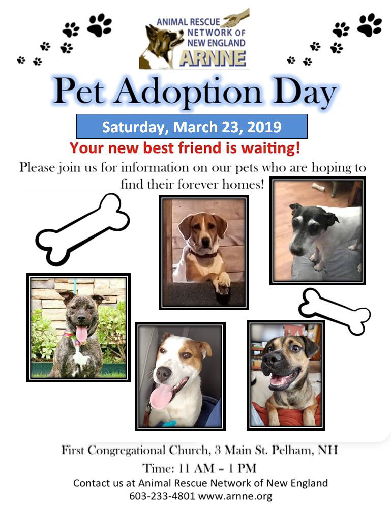 Pet Adoption Day march 23 2019