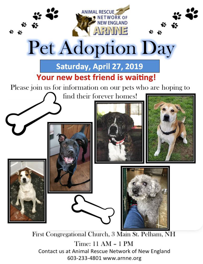 Pet adoption day APR 27 2019