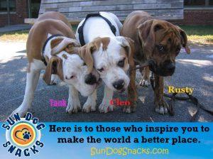 Sundog fundraiser